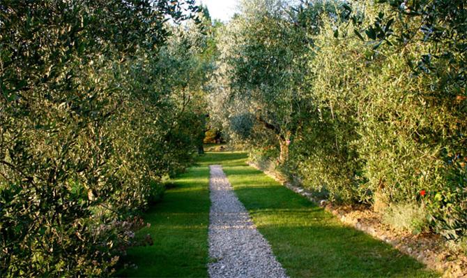 Luxul unui castel toscan 'in varsta' de noua secole - Poza 8