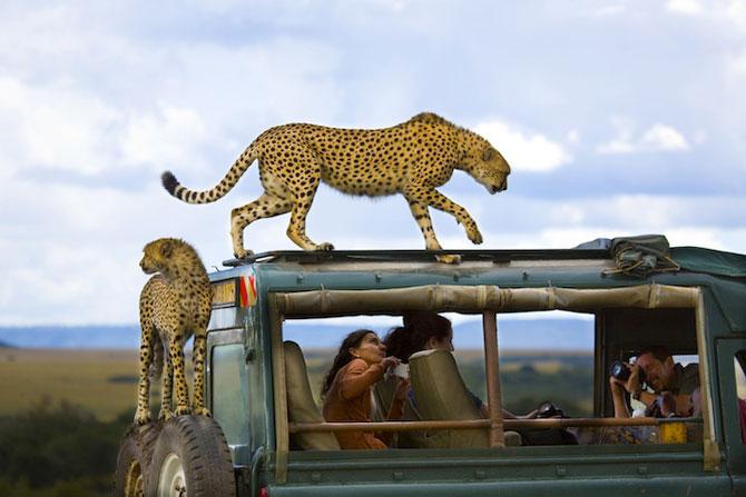 Castigatorii concursului National Geographic Traveler Photo 2013 - Poza 3