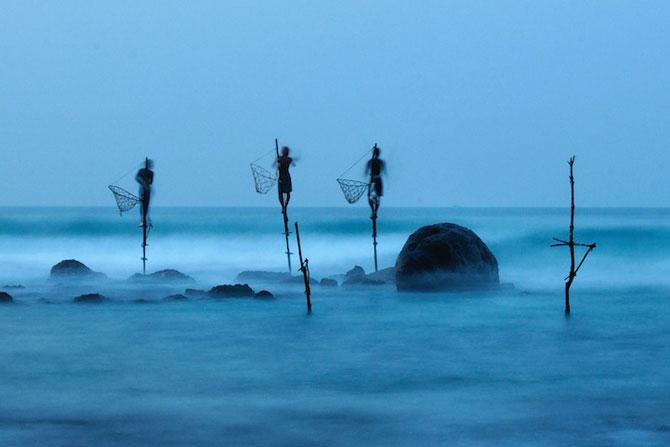 Cele mai bune fotografii National Geographic 2012 - Poza 11