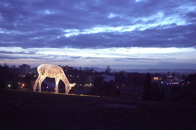 Calatorii luminosi ai lui Cedric Le Borgne - Poza 8