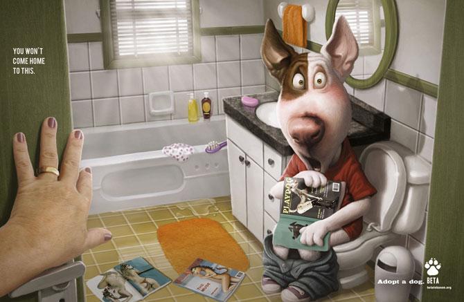Adopta un animal: cele mai bune reclame - Poza 4