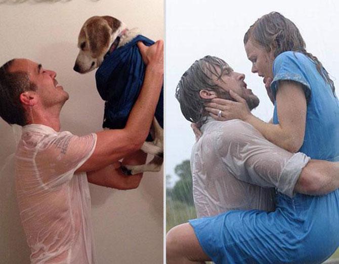 Un catel, star in filme celebre de dragoste - Poza 1