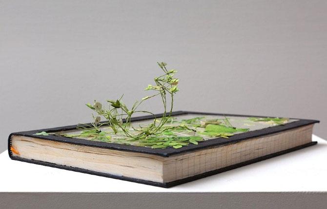 Arta cu natura si carti, de Johannes Helden - Poza 1