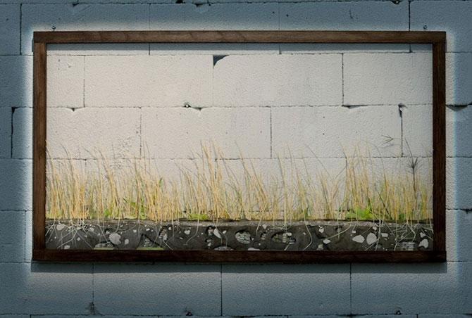 Arta cu natura si carti, de Johannes Helden - Poza 4