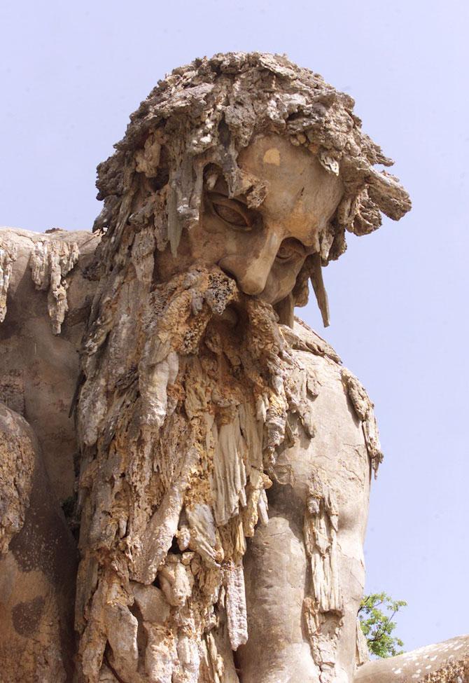 Titanul batran de 6 secole din Florenta - Poza 5