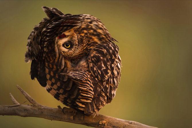 Cele mai bune inscrieri la concursul National Geographic Travel 2014 - Poza 6