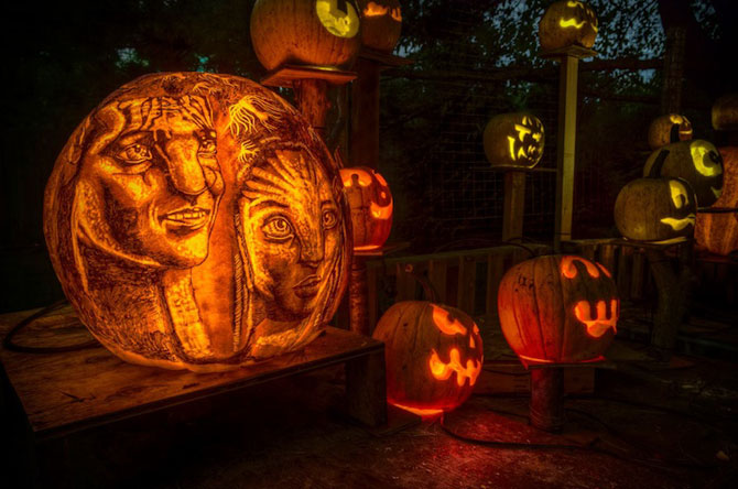 Concurs de dovleci de Halloween, in Rhode Island - Poza 9