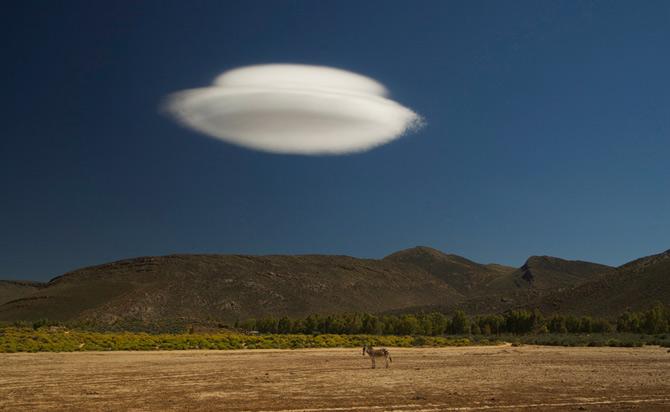 Viitoarele vedete National Geographic - Poza 6
