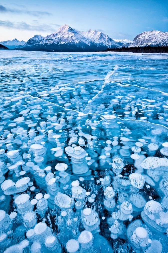 National Geographic da lectii de frumusete naturala - Poza 12