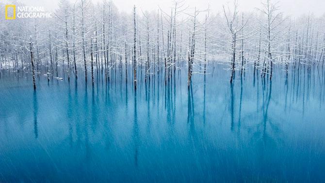 National Geographic lanseaza o noua provocare pentru fotografi - Poza 8