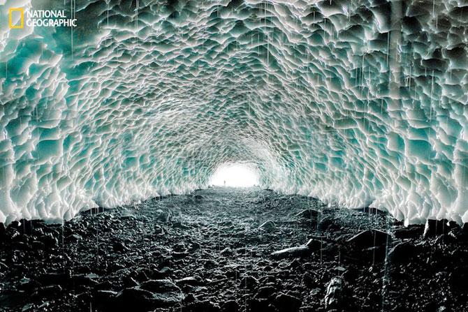 National Geographic lanseaza o noua provocare pentru fotografi - Poza 10