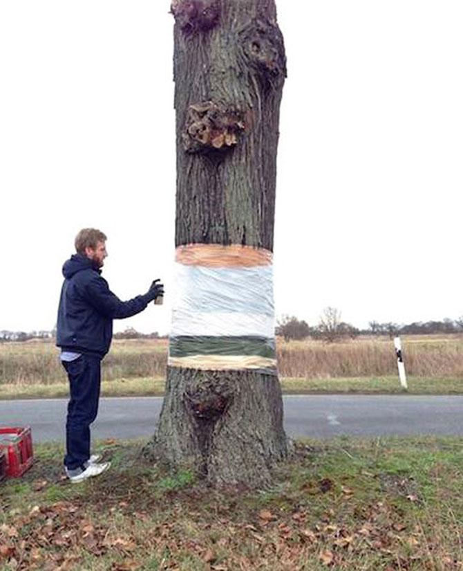 Iluzie optica: Un copac plutitor in Germania - Poza 3