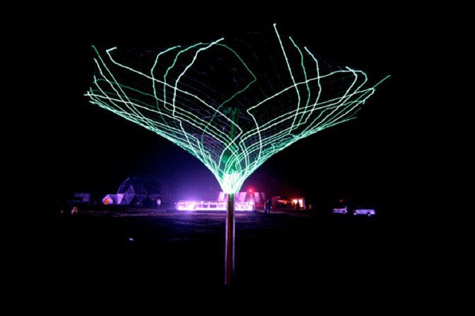 Copacul sensibil de la Muzeul de Arta Moderna, New York - Poza 5