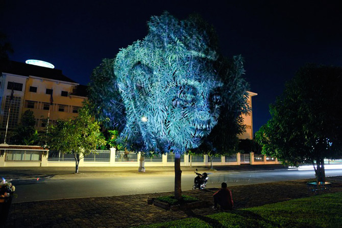 Spiritele copacilor - instalatie de lumina