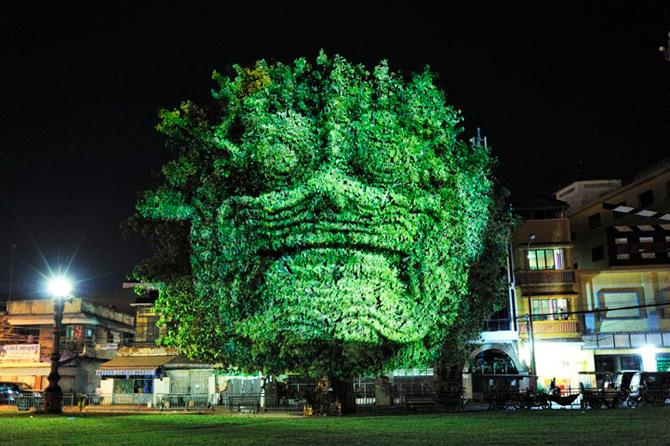 Spiritele copacilor - o instalatie cu lumina si zei - Poza 3