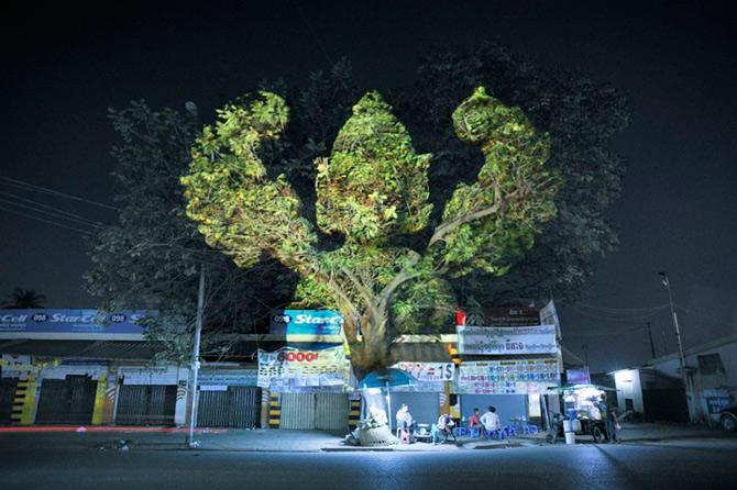 Spiritele copacilor - o instalatie cu lumina si zei - Poza 4