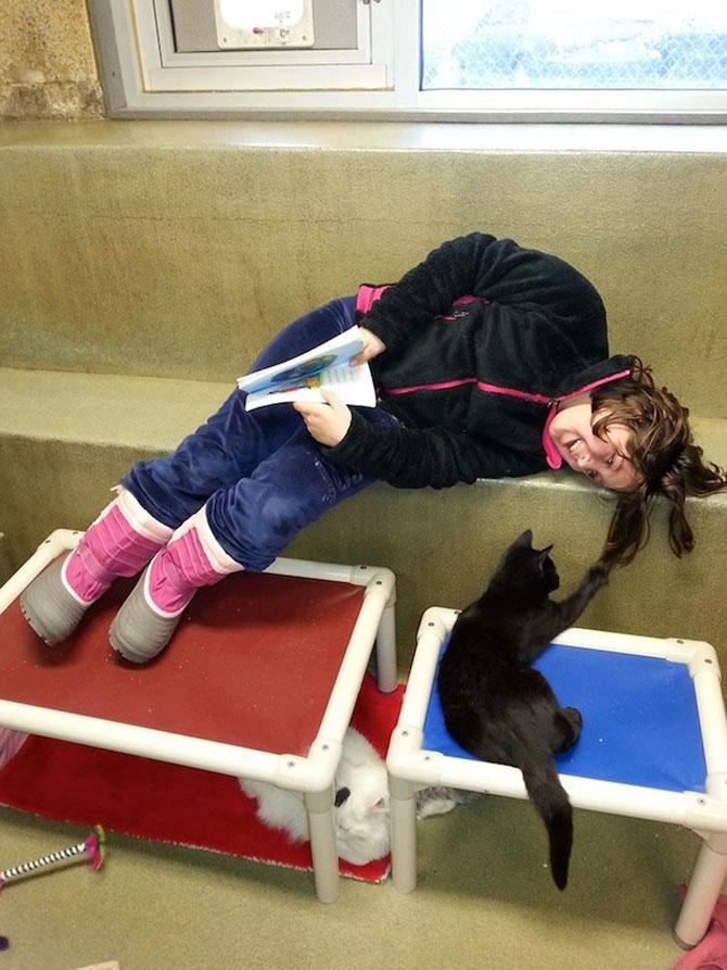 Copiii le citesc pisicilor fara adapost - Poza 3