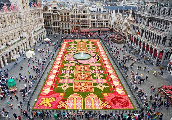 Covorul de flori de la Bruxelles - Poza 1