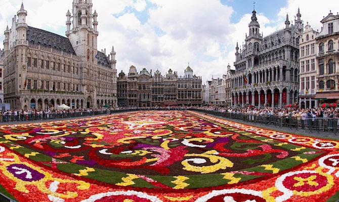 Covorul de flori de la Bruxelles - Poza 2
