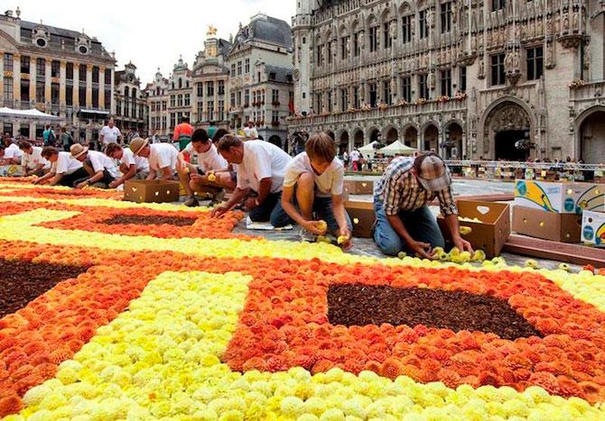 Covorul de flori de la Bruxelles - Poza 3