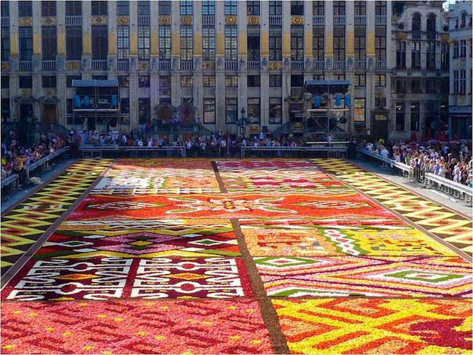 Covorul de flori de la Bruxelles - Poza 4