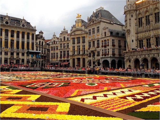 Covorul de flori de la Bruxelles - Poza 5