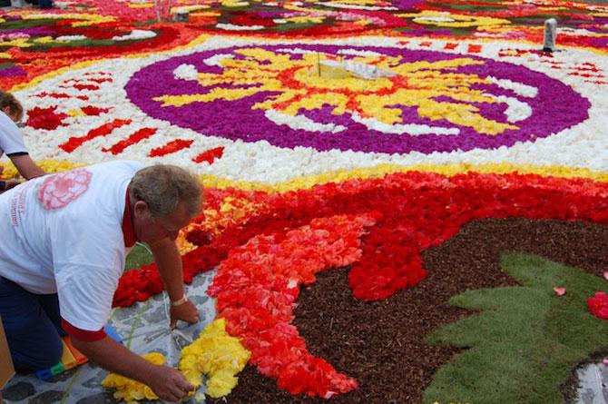 Covorul de flori de la Bruxelles - Poza 6