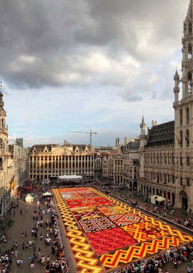 Covorul de flori de la Bruxelles - Poza 11