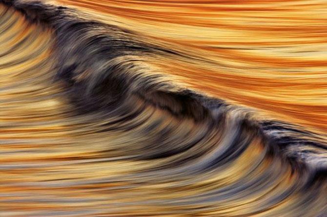 Vara eterna rasare din valurile lui David Orias - Poza 4