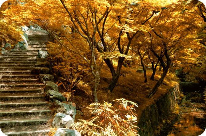 Peisaje in culori jucause, de David Plus1 - Poza 2