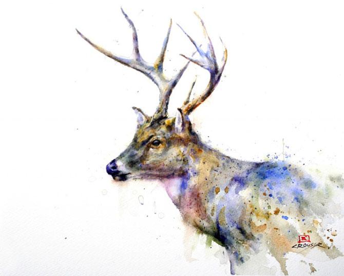 Animale in acuarele ireale, de Dean Crouser - Poza 5