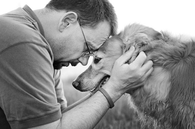 Emotionant: Stapanii isi iau la revedere de la cainii lor - Poza 2