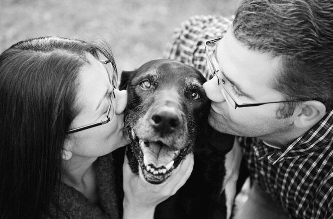 Emotionant: Stapanii isi iau la revedere de la cainii lor - Poza 3