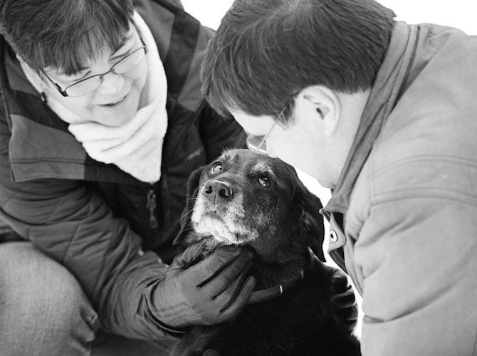 Emotionant: Stapanii isi iau la revedere de la cainii lor - Poza 6