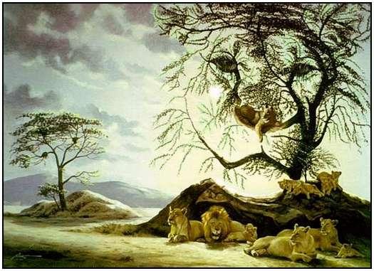 Donald Rust - Iluzii impresionante - Poza 16