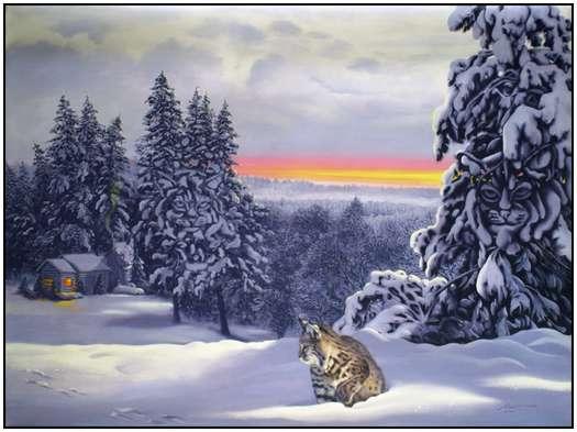 Donald Rust - Iluzii impresionante - Poza 2
