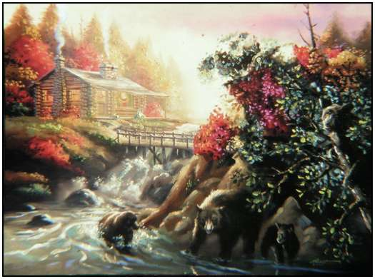 Donald Rust - Iluzii impresionante - Poza 3