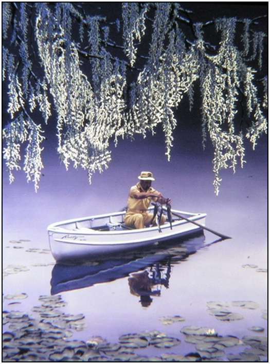 Donald Rust - Iluzii impresionante - Poza 8