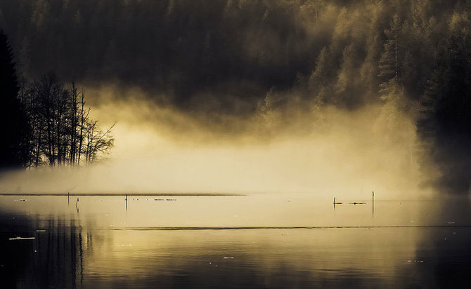 Fotografii Elena Simona Craciun