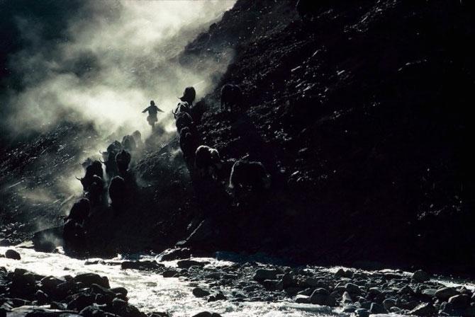 Pe crestele Himalayei, cu Eric Valli - Poza 13