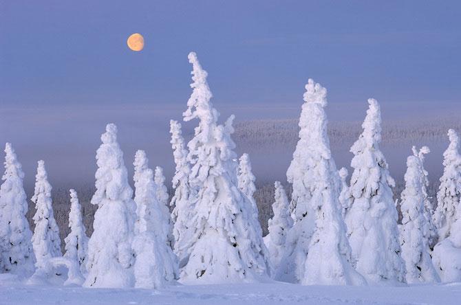 Erlend si Orsolya Haarberg iubesc impreuna natura - Poza 3