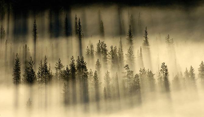 Erlend si Orsolya Haarberg iubesc impreuna natura - Poza 16
