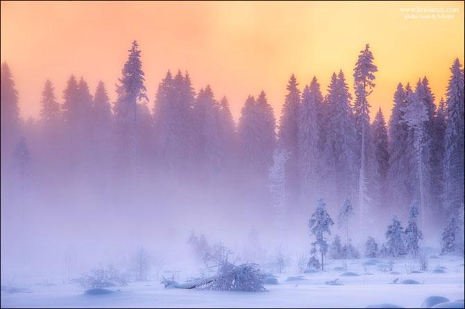 In padurea zanelor cu Anatoly Sokolov - Poza 3