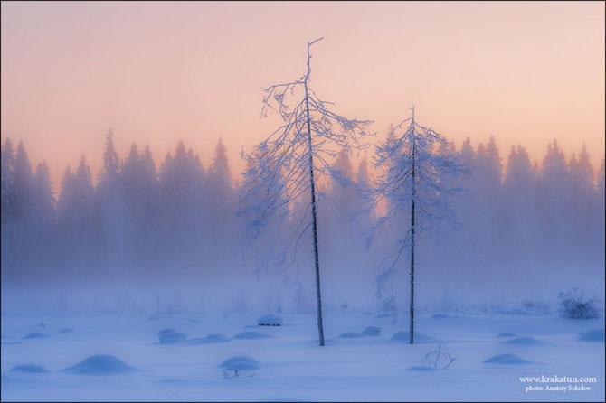 In padurea zanelor cu Anatoly Sokolov - Poza 8