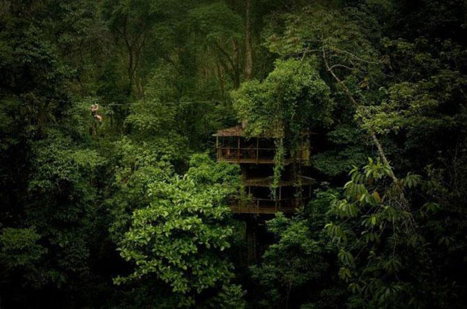 Finca Bellavista, satul din copaci - Poza 1