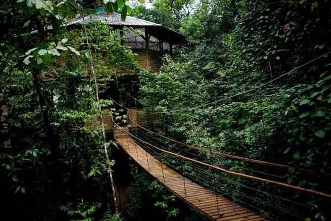 Finca Bellavista, satul din copaci - Poza 2