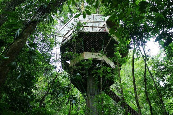Finca Bellavista, satul din copaci - Poza 3