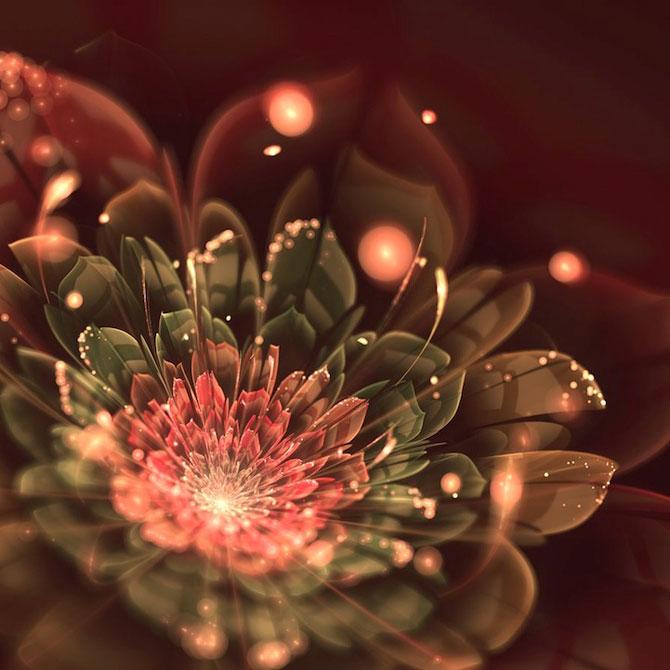 Silvia Cordedda inventeaza flori din fractali - Poza 5