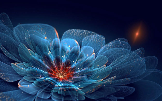 Silvia Cordedda inventeaza flori din fractali - Poza 8