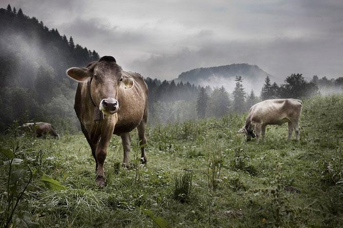 Peisaje spectaculos... de intime, via Florian Ritter - Poza 8